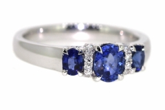 18 carat white gold trilogy with three Ceylon Sapphires equal to 1.29ct & 16 Diamonds equaling .08ct