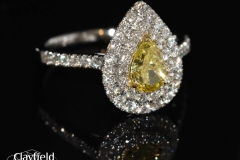 ellow-Diamond-surrounded-by-.61ct-of-Diamonds-all-set-into-Platinum-18ct-Yellow-Gold
